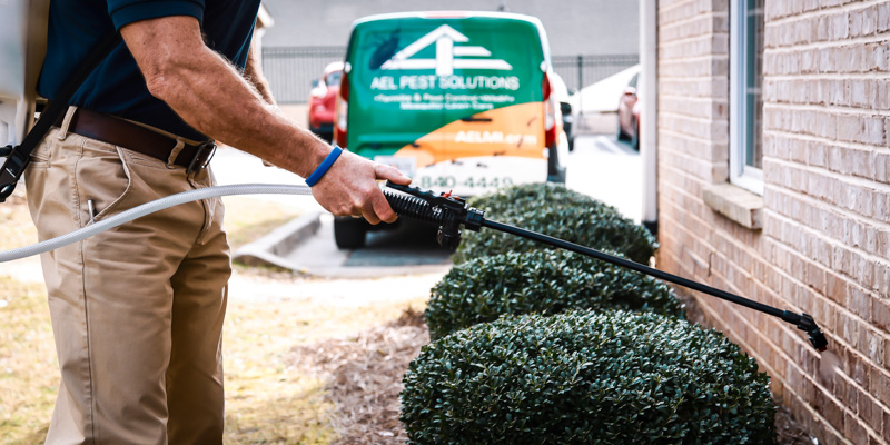 AEL Pest Solutions